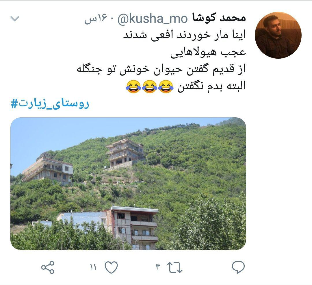 photo_2019-08-15_10-31-56