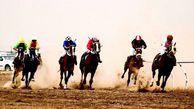 برگزاری هفته هفتم کورس اسب دوانی تابستانه بندرترکمن