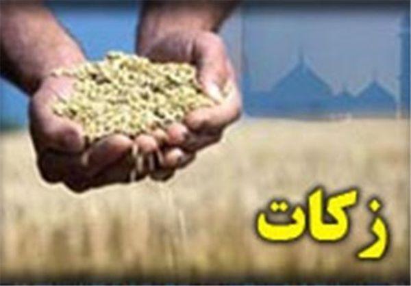 پرداخت بیش از ۳۷ میلیارد تومان زکات در استان گلستان