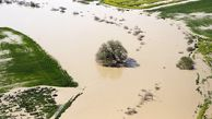 ۲۵۰ میلیارد تومان برای امهال تسهیلات کشاورزان سیلزده گلستان اختصاص داده شد