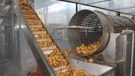 ظرفیت صنایع تبدیلی و تکمیلی گنبدکاووس ۴۰۸ هزار تن است