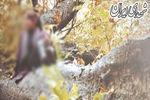فعالیت مدلینگ ها در جنگل های شمال! + عکس