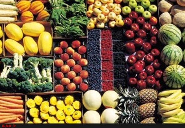 تولید ۲۰۰ هزار تن محصولات جالیزی در استان