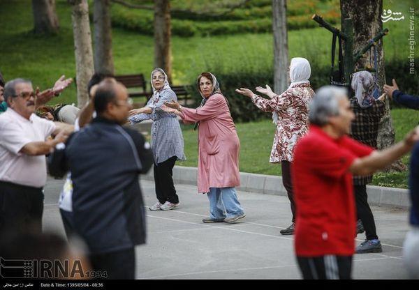 عکس/ ورزش مختلط صبحگاهی در حضور وزیر بهداشت