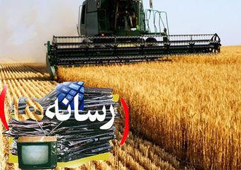 رسالت سنگین رسانه ها در مبارزه با مافیای گندم و آرد در گلستان