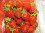 با خوردن این پنج میوه فشار خون خود را کنترل کنید