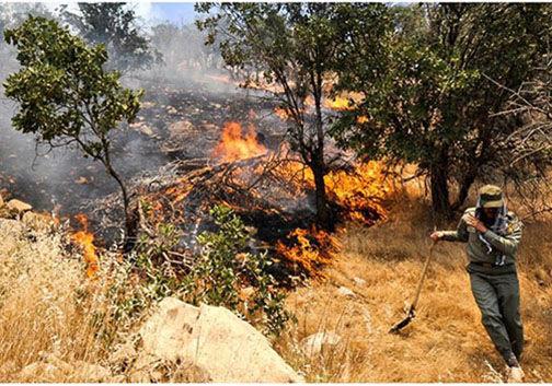 آتش در جنگل نیلکوه گالیکش پس از انفجار معدن