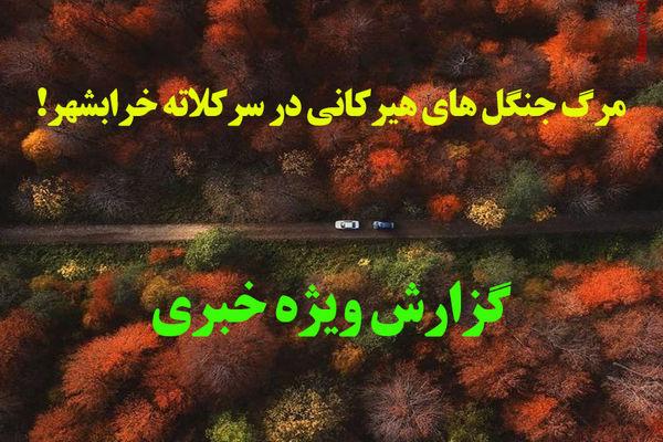مرگ جنگل های هیرکانی در سرکلاته خرابشهر گلستان!