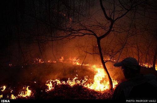 آتش سوزی در جنگل ناهار خوران گرگان/ تصاویر