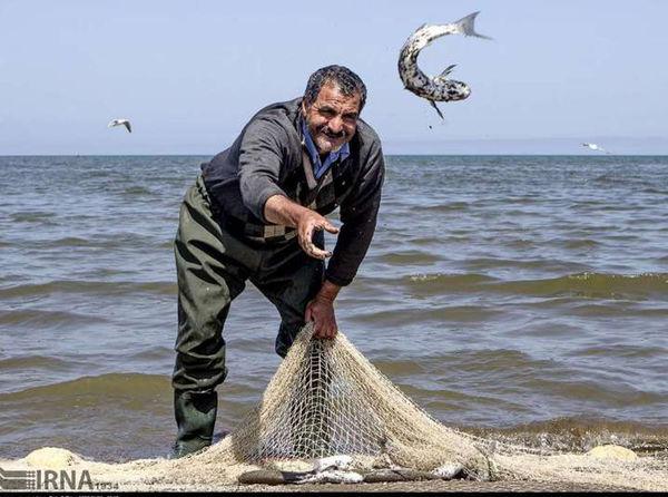 رشد 18 درصدی صید ماهیان استخوانی در استان