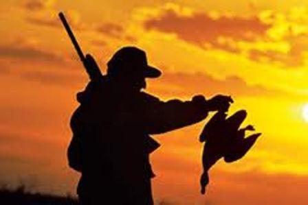 دستگیری شکارچی متخلف پرندگان در خلیج گرگان