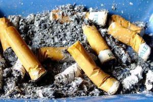 فیلم/ ته سیگارهایی که میلیونها تومان آب میخورد