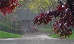 گزارشی از خسارت احتمالی باران شدید در گلستان نشده است