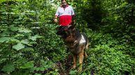 ۱۴ روز جستوجوی بینتیجه در جنگلهای کردکوی/ اثری از فرد گمشده پیدا نشد