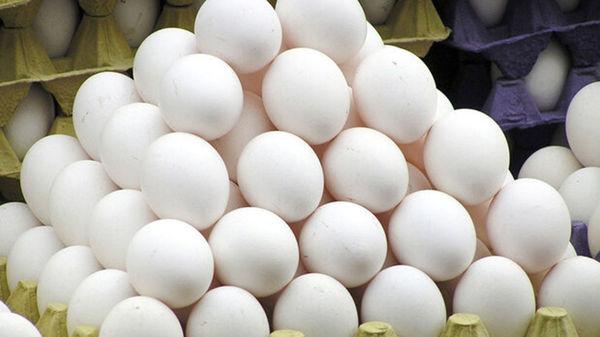 کشف تخلف گرانفروشی تخم مرغ در یک واحد تولیدی