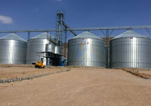اختصاص ۳ سیلو برای تحویل گندم کشاورزان گلستان