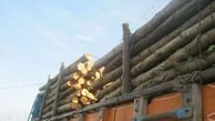 کشف ۳ تن چوب قاچاق در رامیان