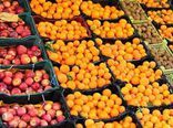 ذخیره کردن بیش از ۹۰۰ تن میوه برای عید در گلستان