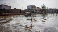 ۳۱۷ هزار هکتار اراضی استان گلستان تحت تاثیر سیلاب قرار گرفت