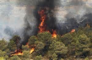 به خط شدن نیروها برای مقابله با آتشسوزی احتمالی در گلستان