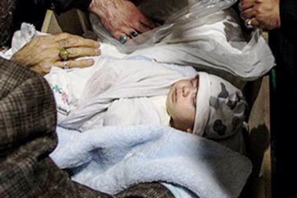 نوزاد 40 روزه شهید مدافع حرم، جواد محمدی+عکس
