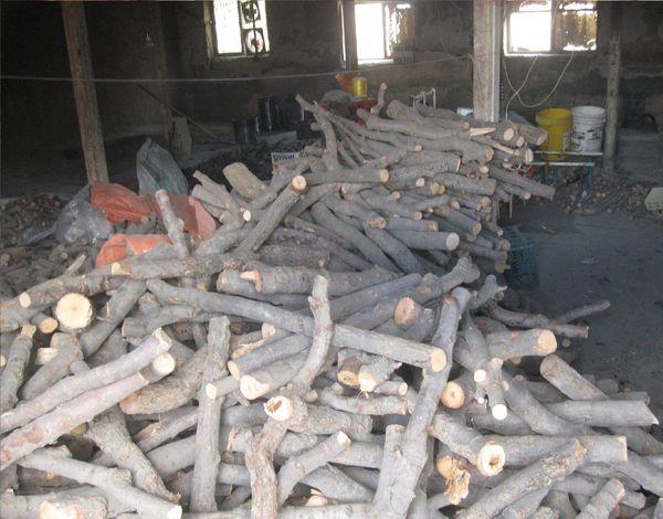 بیش از 3 تن چوب و زغال قاچاق در گنبدکاووس کشف شد