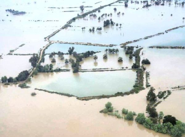 افزون بر هزار میلیارد ریال برای جبران خسارت سیل گلستان در حوزه کشاورزی ابلاغ شد