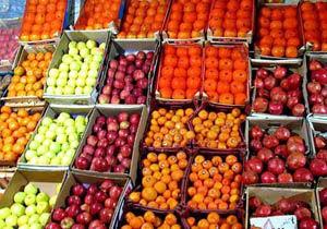 تولید بیش از ۱۰۰ هزار تن انواع میوه در گلستان
