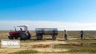 طرح بیابانزدایی در چهار هزار و ۵۰۰ هکتار از اراضی گلستان اجرا شد