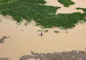 غرق شدن دوباره زمینهای کشاورزی کردکوی / غرامت پرداختی به کشاورزان کافی نیست