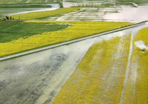 70 میلیارد ریال غرامت به کشاورزان سیلزده گلستانی پرداخت شد