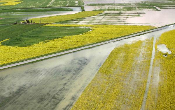 پرداخت وام به کشاورزان سیلزده گلستان متوقف شد
