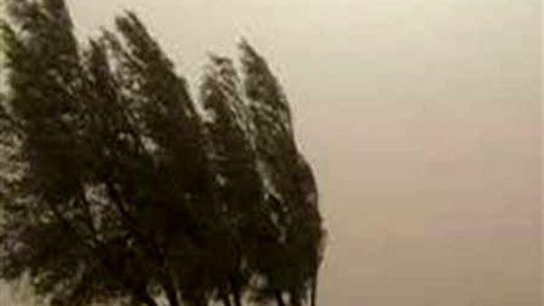 باد شدید در بخش هایی از گلستان