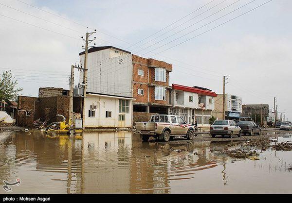 کارشناسان صلیب سرخ جهانی از مناطق سیلزده گلستان بازدید کردند