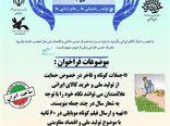 دومین فراخوان مسابقه مجازی «من کالای ایرانی می خرم» استان گلستان اعلام شد