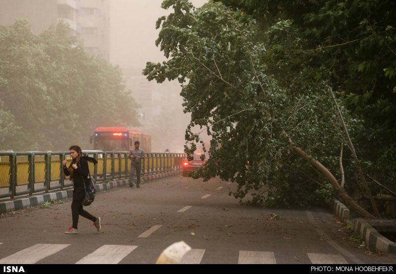 طوفان گلستان