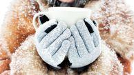 چرا زمستان ها بیشتر سرما میخوریم؟
