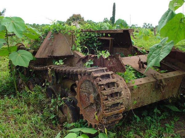 تصاویر/ نبرد طبیعت با تانکها