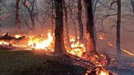 حدود چهار هکتار از جنگل کلاله طعمه حریق شد