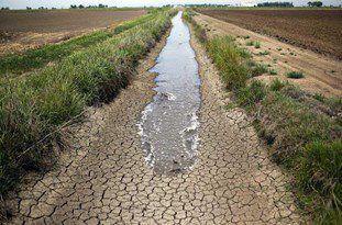 ناتوانی مسوولان در مدیریت منابع آب/ چالش مصرف آب در بخش کشاورزی گلستان