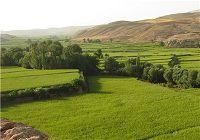 آبیاری ۳۰ هزار هکتار از اراضی استان توسط سدها