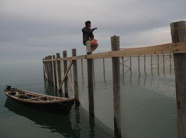 رونق پرورش ماهی گلستان در محیط محصور