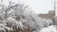 تعطیلی برخی از مدارس گلستان در پی بارش برف
