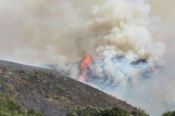 آتش سوزی ۲۵۰ هکتار از اراضی جنگلی و مرتعی گلستان