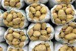 قیمت خرید تضمینی سیبزمینی در گلستان اعلام شد