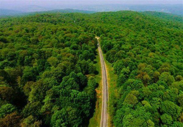 جنگلهای هیرکانی ایران ثبت جهانی میشوند
