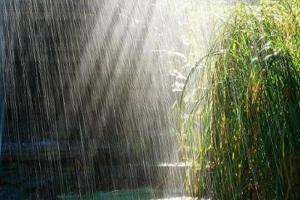 وقوع بارش های نقطه ای از امشب در گلستان/ به رودخانه ها نزدیک نشوید