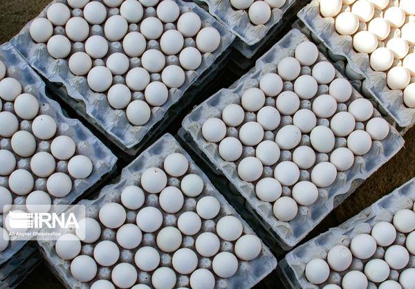 صادرات محصولات دامی گلستان در شرایط کرونایی ۳ برابر شد