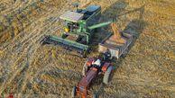 دولت آینده در قبال کشاورزان چه مسوولیتی دارد؟