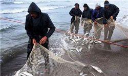 فعالیت 13 هزار صیاد در دریای خزر